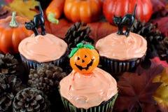 平衡秋天万圣节设置的杯形蛋糕 免版税库存照片