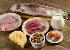 平衡饮食的高蛋白食物 免版税库存照片