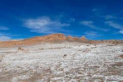平阿塔卡马沙漠的盐 库存照片