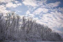 平静的冬天妙境 库存照片