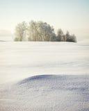 平静的冬天横向 图库摄影