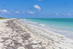 平静的加勒比海滩在一个夏日 免版税库存照片