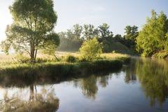 平静的夏天风景 安静的河和绿色树在银行 库存图片
