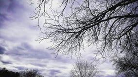 平静的天空 免版税库存照片