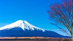 平静的富士山视图风景 库存图片
