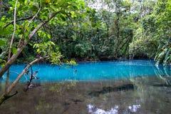 平静的水池在绿松石河 库存图片