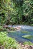 平静的水池在绿松石河 库存照片