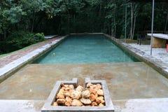 平静的池 库存照片