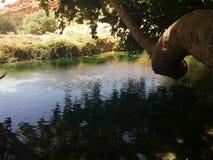 平静的河 免版税库存照片