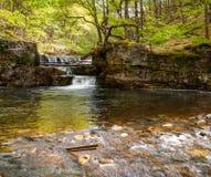 平静的河Nedd在布雷肯比肯斯山 免版税库存照片