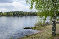 平静的湖视图 免版税图库摄影