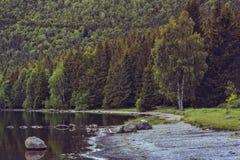 平静的湖风景 免版税图库摄影