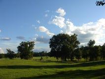 平静的牧场地 免版税库存照片