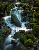 平静的生苔瀑布 库存图片