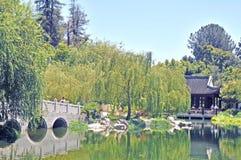 平静的盐水湖 免版税库存照片