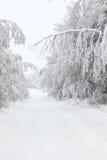 平静的空的国家(地区)冬天路 免版税库存照片