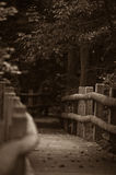 平静的路径 图库摄影