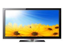 平面屏幕电视 皇族释放例证