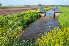 水平面控制的小测流堰在荷兰开拓地 免版税库存照片