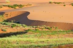 平面的沙丘 免版税库存照片