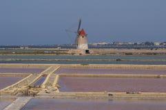 平面的盐sicilia 免版税库存照片