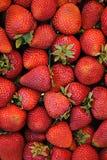 平面的草莓 免版税库存照片