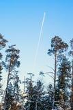 平面飞行高在冬天森林的天空 免版税图库摄影