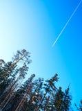 平面飞行高在冬天森林的天空 库存图片