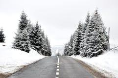 平直的多小山路在冬天 库存照片