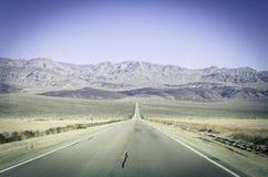 平直的沙漠路加利福尼亚 图库摄影