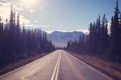 平直的狭窄的森林公路导致山的,概念-山是叫,移动,自由,冒险 库存图片
