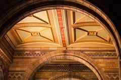 23 07 2015年伦敦,英国,自然历史博物馆-细节 免版税库存图片