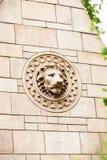 23 07 2015年伦敦,英国,自然历史博物馆-细节 免版税库存照片