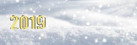 2019年在雪 免版税库存照片