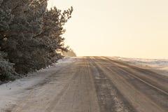 年的冬时,特写镜头 免版税库存照片