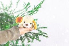 年的标志是一个玩具狗在女孩的手上以冷杉分支为背景 新年圣诞节 免版税库存图片