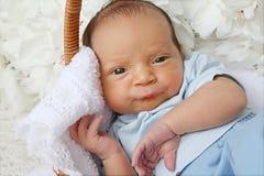 年纪的婴孩10天 免版税库存照片