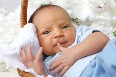 年纪的婴孩10天 图库摄影