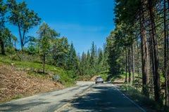 2007年被采取的加利福尼亚1月国家公园美国优胜美地 在森林公路的旅游汽车 免版税库存图片