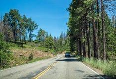 2007年被采取的加利福尼亚1月国家公园美国优胜美地 在森林公路的旅游SUV汽车 免版税库存图片
