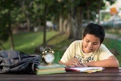 年轻亚裔男孩有乐趣图画在公园 库存照片
