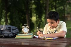 年轻亚裔男孩有乐趣图画在公园 免版税库存照片