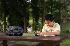 年轻亚裔男孩有乐趣图画在公园 免版税图库摄影