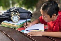 年轻亚裔男孩有乐趣图画在公园 库存图片