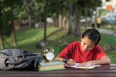 年轻亚裔男孩有乐趣图画在公园 图库摄影