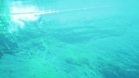年轻人下潜和游泳到湖里 股票视频