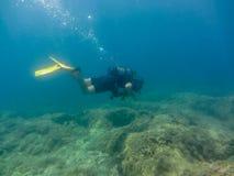 年轻人佩戴水肺的潜水 免版税库存照片