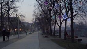 年轻人在有薄雾的散步走在弗罗茨瓦夫 股票视频