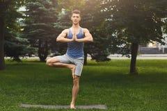 年轻人在树的训练瑜伽摆在得户外 免版税库存照片