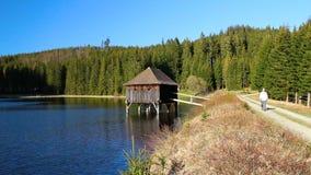 年轻人在道路的徒步旅行者步行在与池塘、木头大厦和森林的好的风景 股票视频